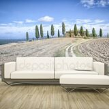 depositphotos_77591306-stock-photo-photo-wall-mural-sofa-floor